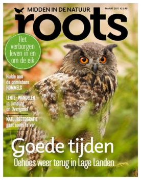 Roots 3, iOS, Android & Windows 10 magazine