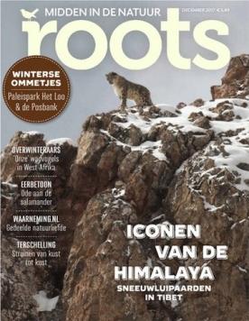 Roots 12, iOS, Android & Windows 10 magazine