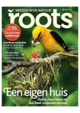 Roots 5, iOS, Android & Windows 10 magazine