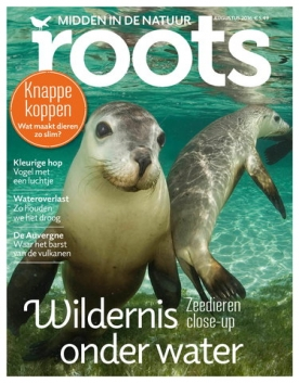 Roots 8, iOS, Android & Windows 10 magazine