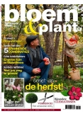 Tuinseizoen 11, iOS, Android & Windows 10 magazine