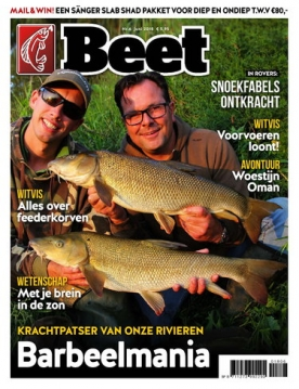 Beet 6, iOS & Android  magazine