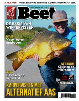 Beet 12, iOS & Android  magazine