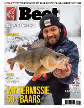Beet 2, iOS & Android  magazine