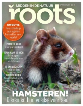 Roots 9, iOS & Android  magazine