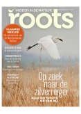 Roots 11, iOS, Android & Windows 10 magazine