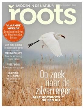 Roots 11, iOS, Android & Windows 10 magazine