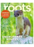 Roots 4, iOS, Android & Windows 10 magazine