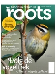 Roots 10, iOS & Android  magazine