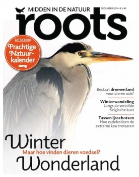 Roots 12, iOS & Android  magazine