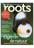 Roots 4, iOS & Android  magazine