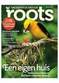 Roots 5, iOS, Android & Windows 10 magazine
