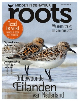 Roots 7, iOS & Android  magazine